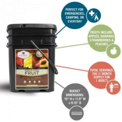 Gluten Free Emergency Freeze Dried Fruit - 156 Servings