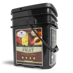Gluten Free Emergency Freeze Dried Fruit - 156 Servings